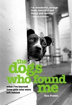 The Dogs Who Found Me book cover