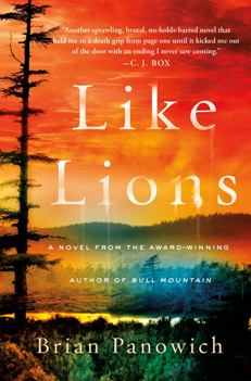Like Lions book cover