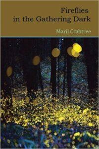cover image for Fireflies in the Gathering Dark