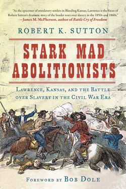 cover image for Stark Mad Abolitionists